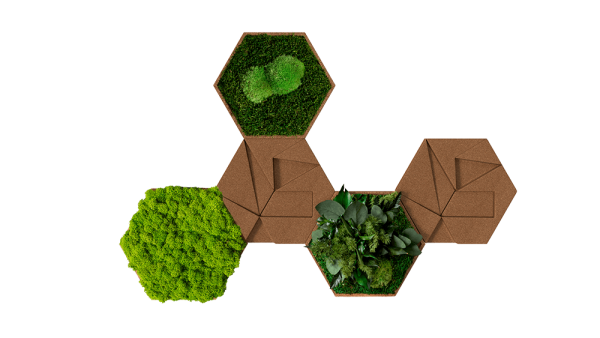 Kork Hexagon 5er Set