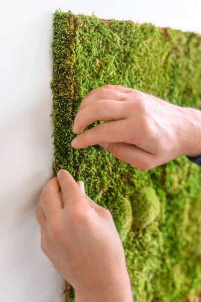 flexGREEN edge greening forest moss large