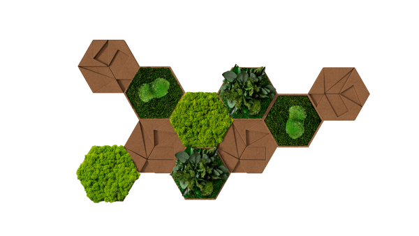 Kork-Hexagon 10er Set