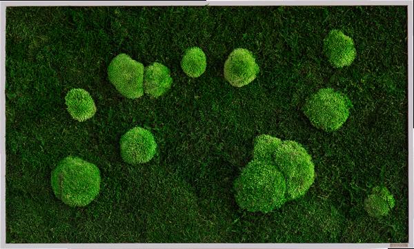 Moosbild: Wald- und Kugelmoosbild 100x60cm