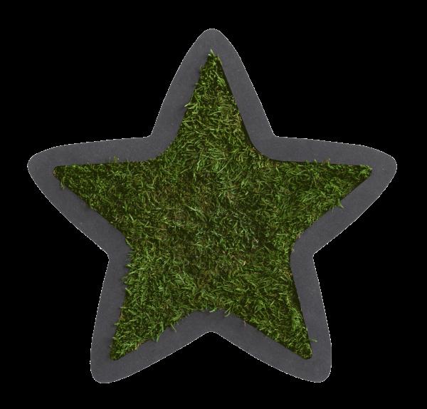 Piktogramm: Stern