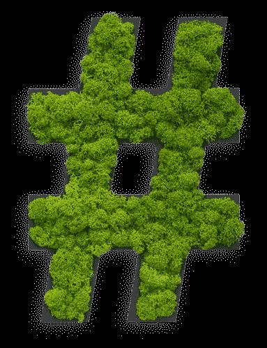 "Pictogram: Special symbol ""hashtag"" Reindeer moss"