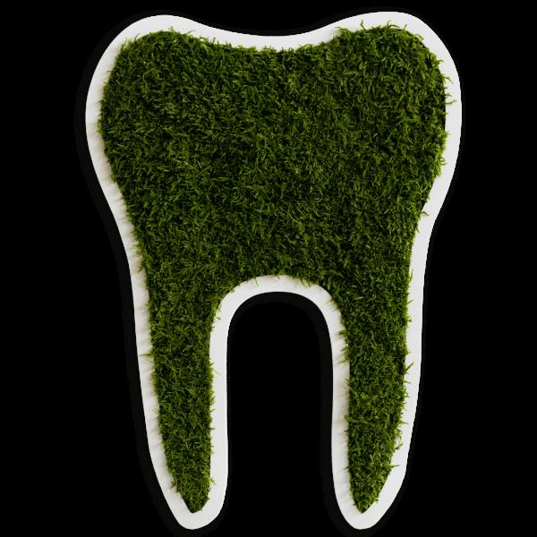 Piktogramm: Zahn groß Waldmoos (50cm)
