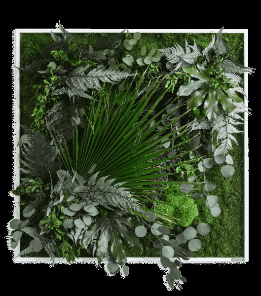 quadro di piante con disegno della giungl 80x80cm struttura in legno massello (bianco)