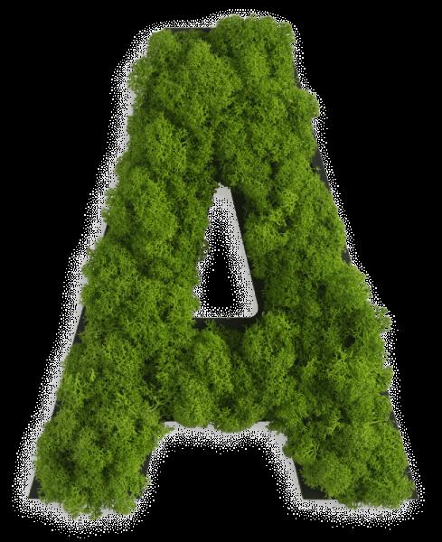 Piktogramm: Buchstaben Islandmoos