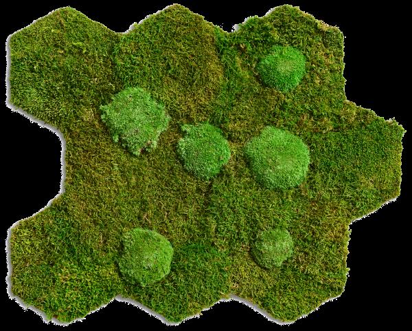 flexGREEN Wald- und Kugelmoos (2 Matten)